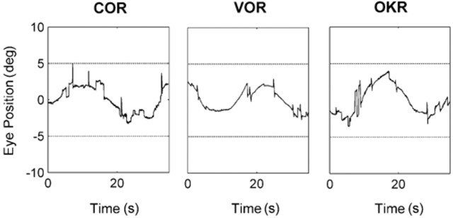 Infra-red recordings of cervico-ocular reflex, vestibulo-ocular reflex and optokinetic reflex resulting from sinusoidal movements (0.04 Hz, ± 5° amp). This isolates the slow phase component as there is no need for resetting saccades of nystagmus when tracking a back and forth sinusoid.