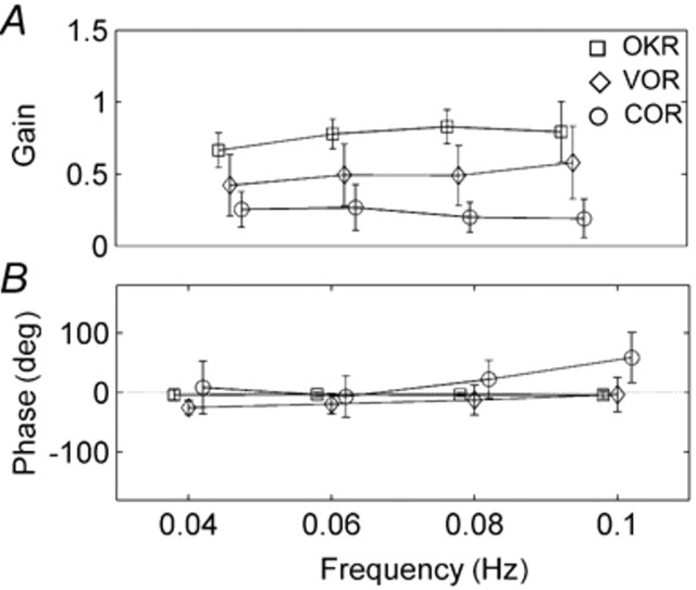 Mean amplitudes of reflex responses at different sinusoid stimulus frequencies. Gain of COR is lowest (VOR low at slow frequencies but increases with higher frequencies). Phase of VOR and COR are more variable and COR lags behind trunk rotation at higher frequencies.  With old age, VOR and OKN gain decrease; there is a compensatory increase in COR gain, as there is after vestibular  dysfunction.