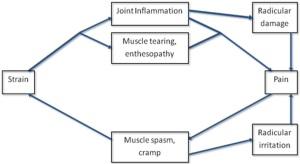 Vicious Cycle of Neck pain